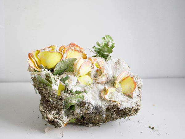 pastic flowers, zellan, earth